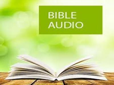 Bible app barnar image.jpg